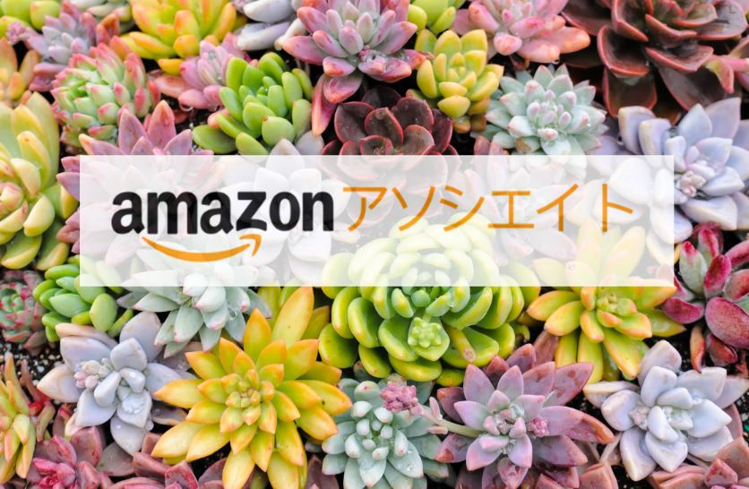 【Amazonアソシエイト】本家の申請方法を詳しく説明します!