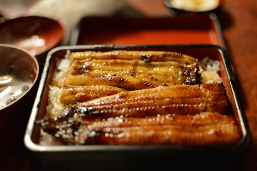 【幻の鰻】大井川「共水うなぎ」が神奈川で食べられるお店は?